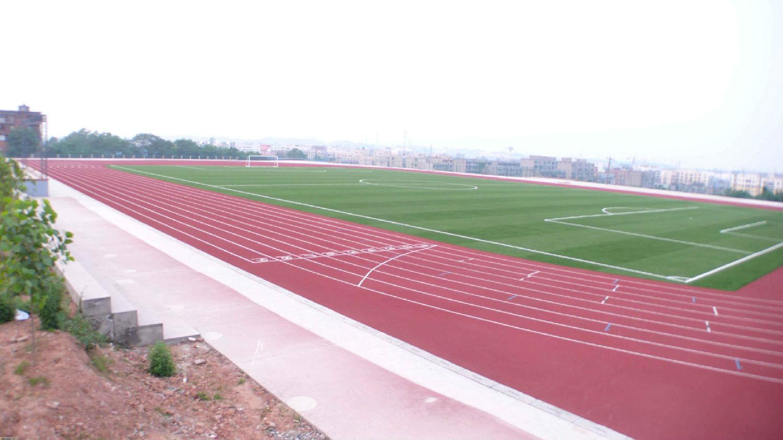 标准8道混合型塑胶跑道,11人制人造草坪足球场