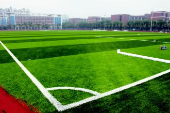 公共足球场