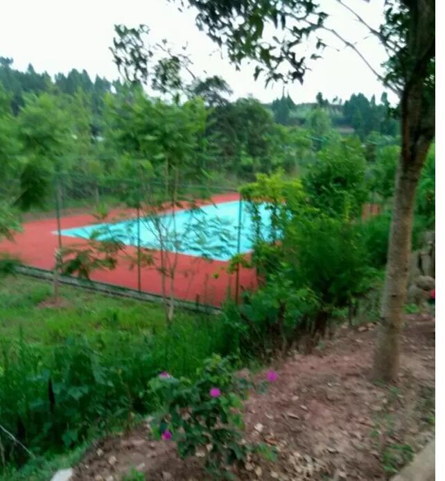 水上乐园羽毛球场