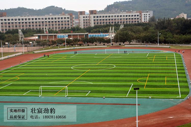 吉林大学珠海学院人造草坪足球场