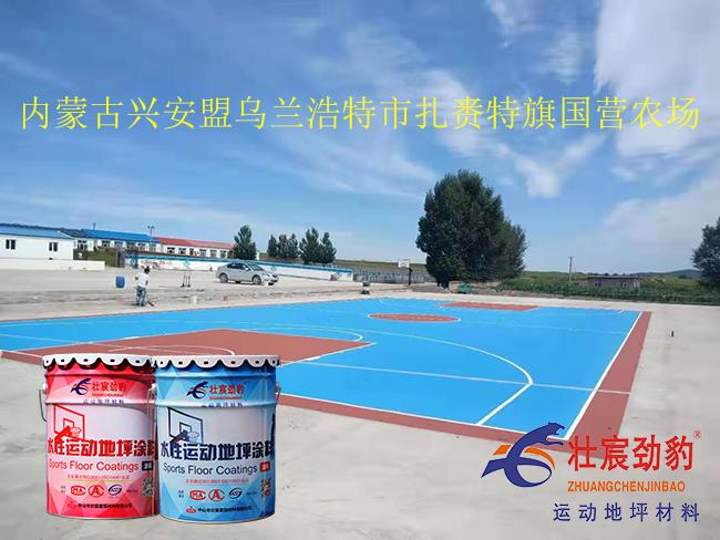 内蒙古篮球场|乌兰浩特篮球场施工|乌兰浩特篮球场材料厂家